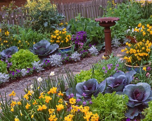 Eat your yard how to design an edible landscape nature ridge homes Flowers to plant in vegetable garden