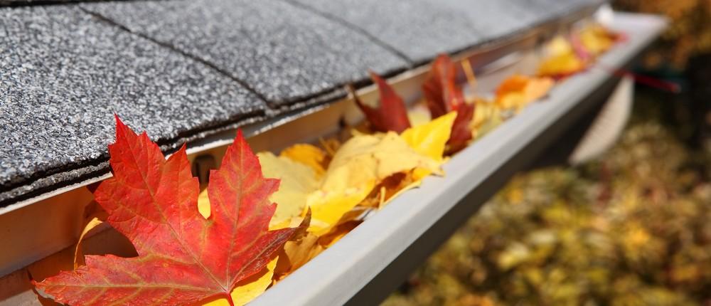 leaves-in-gutters