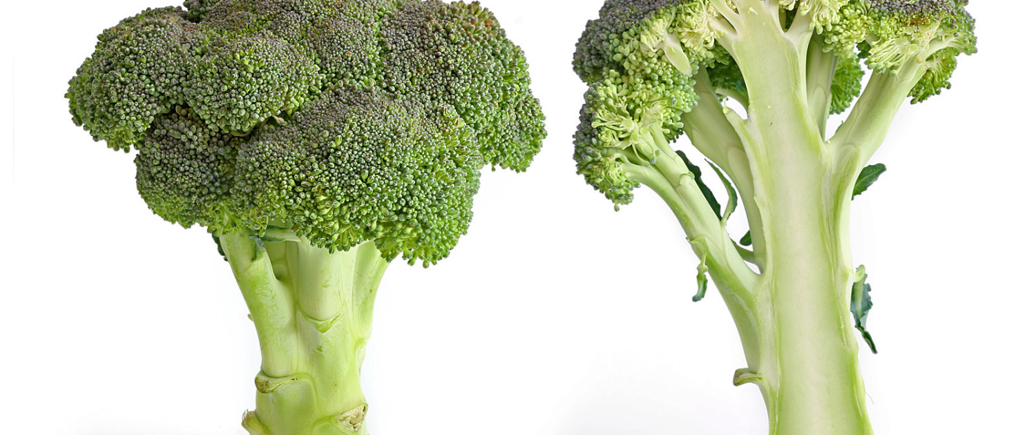 Broccoli_and_cross_section_edit